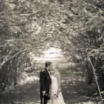 bröllopsfoto karlsborg, hjo, skövde, tibro, tidaholm, bröllopsfotograf (45)