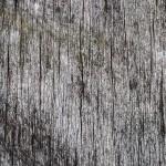 förpackningsfotografering, matfoto, müsli, musli, flingor (1)