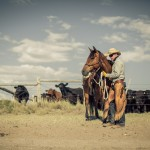resefotograf, montana, usa, cowboys, ridning, hästar, horses, work ranch, j bar l (17)