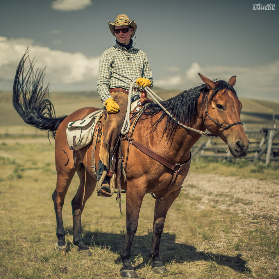 resefotograf, montana, usa, cowboys, ridning, hästar, horses, work ranch, j bar l (24)