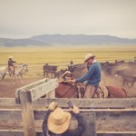 resefotograf, montana, usa, cowboys, ridning, hästar, horses, work ranch, j bar l (92)
