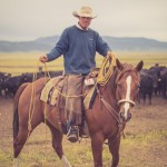 resefotograf, montana, usa, cowboys, ridning, hästar, horses, work ranch, j bar l (93)