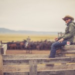resefotograf, montana, usa, cowboys, ridning, hästar, horses, work ranch, j bar l (95)