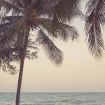 resefotografering, thailand, resort, nishaville, surffoto, surf photographer (6)