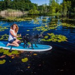 stand up paddleboard, sup, cecilia bang melchior (4)