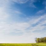 Lantbruksfotograf, uppkomst, Falköping - Väderstad-Verken (30)