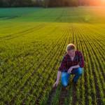 Uppkomst - Jordbruksfotograf, Svärtan/Grebban, Hjo - Väderstad-Verken - Agriculture & farming photographer (18)