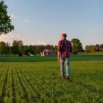 Uppkomst - Jordbruksfotograf, Svärtan/Grebban, Hjo - Väderstad-Verken - Agriculture & farming photographer (25)