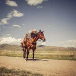 Travel photographer Jesper Anhede at J bar L Ranch, Montana USA