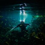 Underwater photographer - Undervattensfotograf - Cenote - Sötvattenskälla - Cave diving - Grottdykning - Mexico, Tulum, Akumal, Mexiko