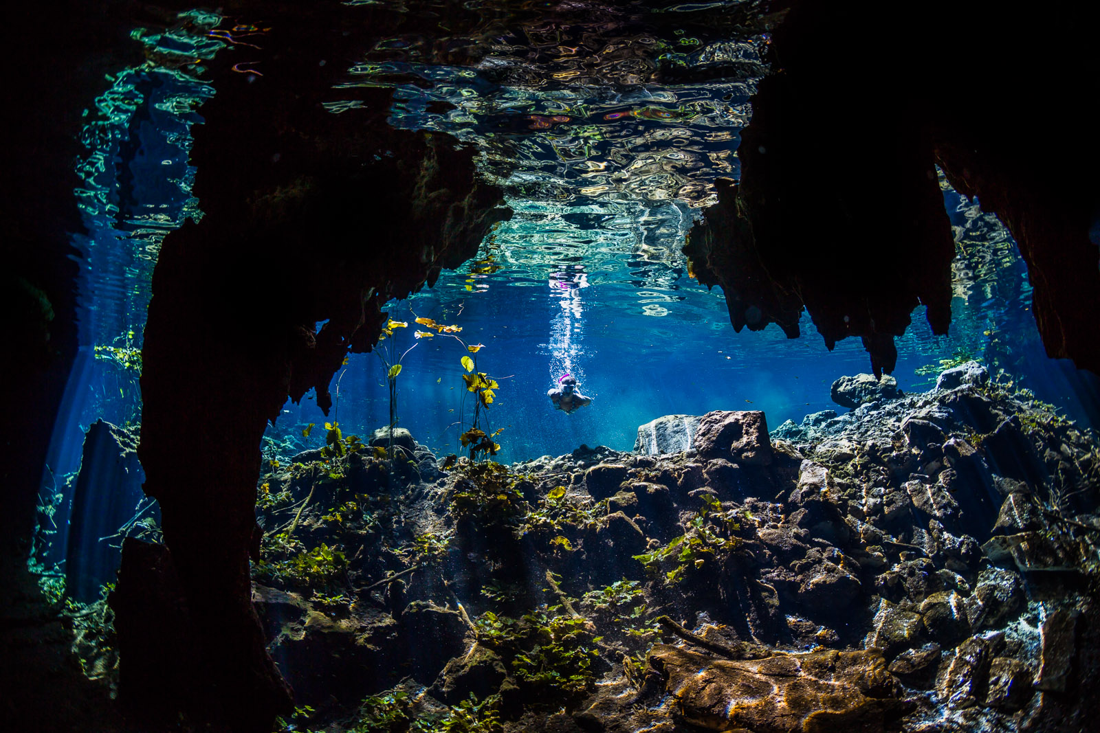 Underwater photographer - Undervattensfotograf - Cenote - Sötvattenskälla - Mexico, Tulum, Akumal, Mexiko - Snorkeling - Snorkling