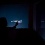 5-night-lights-on-manta-resort-underwater-room-money-shots