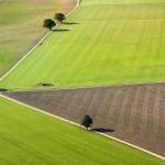 farming photography, agriculture photography, lantbruksfotografering, jordbrukfotografering, almnäs bruk, sverige, sweden, scandinavia, ekologiskt jordbruk, ekologiskt lantbruk, organic farming, organic,