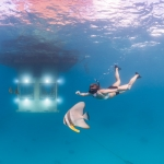 Underwater photographer - Louise taking a swim with the three resident batfish outside the coolest house in the world and the perfect honeymoon getaway - The Underwater Room.