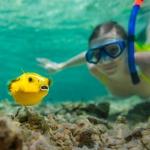 underwater-photography-aquatech-undervattensfoto-11