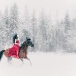 fine art, fine art photography, fine art photographer - Fairy tale portrait photographer - Snow White - Conceptual photographer - Konceptuell fotograf