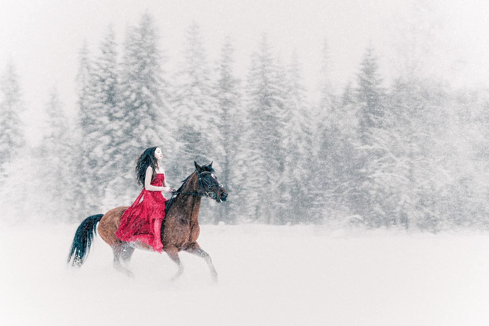 snow white, snow, rider, horse, winter, fairy tale, conceptual photographer, snövit, snö, ryttare, häst, vinter, saga, grimm, konceptuell fotograf