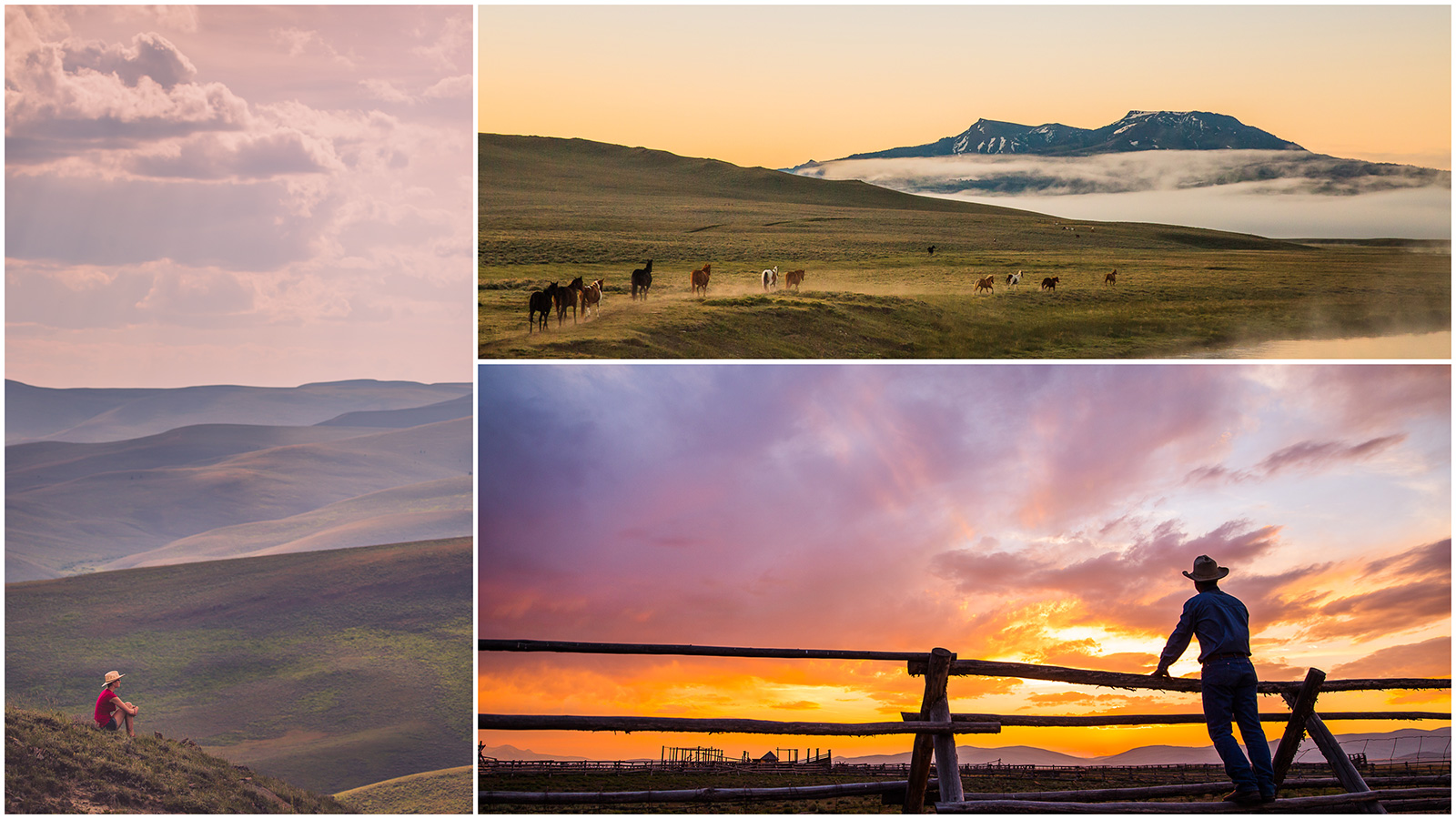 montana, usa, travel, wanderlust, centennial valley, yellowstone, jbarl, ranch, cowboy, photojournalism, outwest, montana moment, bigsky, sunset, sunrays, holistic, anhede, holistic cattle ranch, holistic ranch, big sky country, in montana, on assignment