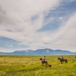 range rider, cowboy, conservationist, montana, cattle, livestock, ranch, usa, horses, centennial valley, yellowstone, photojournalism, big sky country, on assignment, anhede