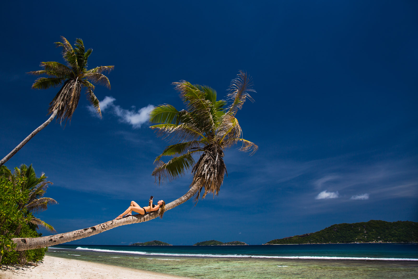 beach, chillax, destination photographer, fotograf, la digue, palm tree, paradise, photographer, reading, relax, resefotograf, seychellerna, seychelles, travel, travel photographer, vacation