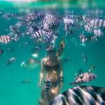 Underwater photographer in Baie Ternay marine park, Seychelles