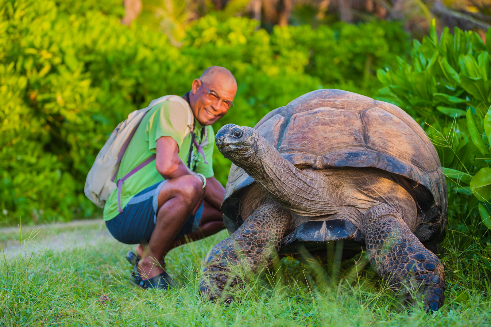 esmeralda-tortoise-bird-island-seychelles-wanderlust-destination-photograper