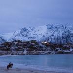 Road trip & landscapes - Lofoten & Vesterålen, northern Norway