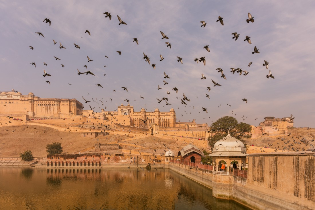 january-destination-photography-amber-fort-jaipur-rajasthan-india