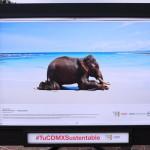 c40-mayors-summit-photo-exhibition-climate-change-007