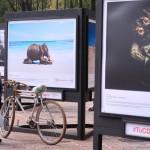 c40-mayors-summit-photo-exhibition-climate-change-016