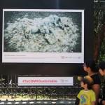 c40-mayors-summit-photo-exhibition-mexico-city-lucie-foundation-006