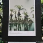 c40-mayors-summit-photo-exhibition-mexico-city-lucie-foundation-011
