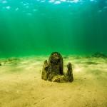 Undervattensfoto & undervattensvideo - Arkeologisk dokumentation under vatten - Hertig Johans Brygga, Vättern, Hjo, Sverige