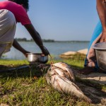 Fishing - Breakfast by the Wirawila lake, Saraii Village, Yala, Sri Lanka
