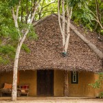 Mud Chalet - Eco Lodge, Saraii Village, Yala, Sri Lanka