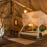 Tree house, top floor bedroom - Eco hotel, Saraii Village, Yala, Sri Lanka
