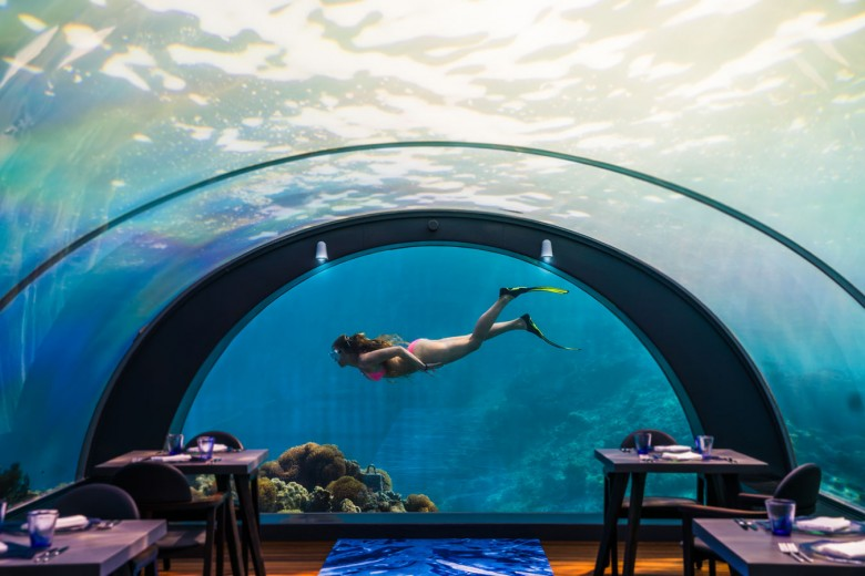 Inside of the world's largest all-glass underwater restaurant located at Hurawalhi Island Resort in the Maldives.