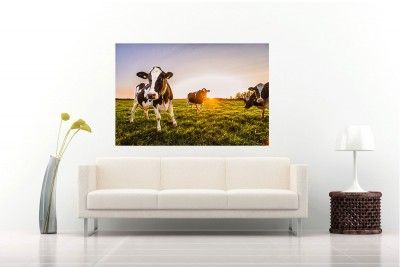 anhede-curious-cows-photo-art-public-space-hotel-lounge-web