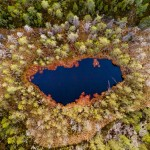 anhede-scandinavian-forest-photo-art-aerial-web