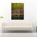 anhede-scandinavian-forest-photo-art-landscape-sofa-web