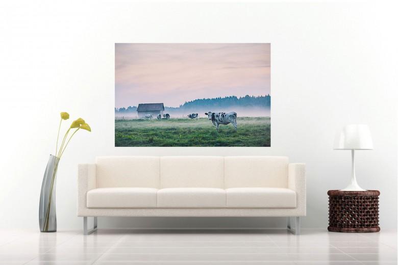 anhede-sweden-cows-mist-photo-art-public-space-web