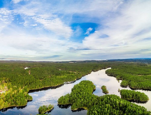 In Sweden we have around 100.000 lakes – This is Lilla Trehörningen in Tiveden.
