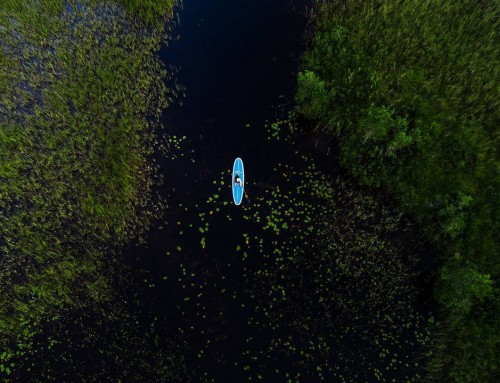 Stand-up paddling with water lilies – Tiveden, Sweden