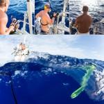 bts-underwater-photographer-jesper-anhede-pacific-ocean