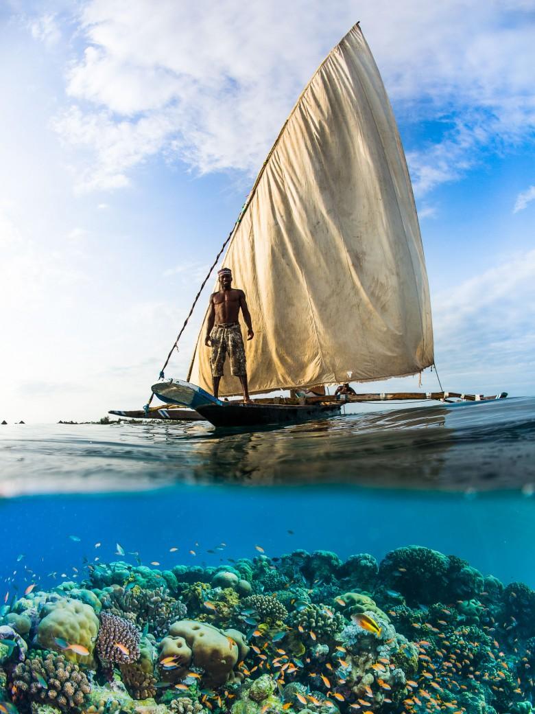 over-under-shot-underwater-split-surface-shot