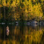 artist-cecilia-kallin-photographer-anhede-64