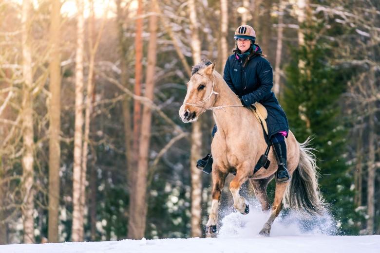 Galopp, häst, ryttare, snö, vinter - Ösjönäs, Tiveden, Sverige