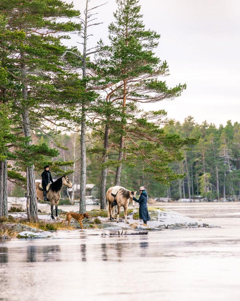 horseback riding osjonas tiveden national park sweden