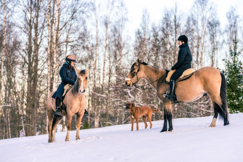 outdoor photography winter horseback riding in snow