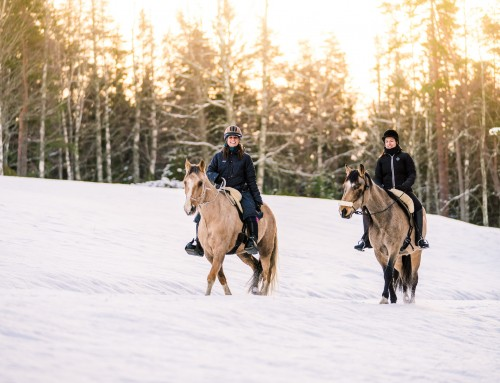 Outdoor photography – Horseback riding at Ösjönäs in Tiveden national park, Sweden